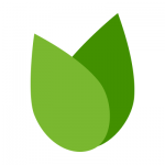 badcredit.org logo